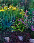 Vashon Island, WA: Summer garden detail with lilies, anemone and sedum growing around border stones