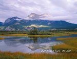 Jasper National Park, Alberta: Roche Ronde in low clouds with reflection in wetland along the Athabasca River