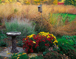 Bureau, County, IL: Birdbath and garden of fall flowers at the edge of a tall grass prairie