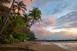 Kauai,HI: Sunrise clouds and overhanging palm trees on Hanalei Bay near Makahoa point