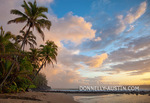 Kauai, HI: Sunrise clouds and overhanging palm trees on Hanalei Bay near Makahoa point