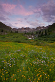 San Juan Mountains, CO: American Basin at dawn with wildflower meadows beneath Handies Peak