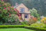 Shore Acres State Park, OR: The Simpson Estate house and garden in spring featuring azaleas and rhododendrons in bloom.