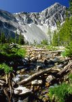 Montana mountain stream.