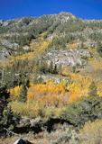 Autumn in the High Sierra Nevadas.
