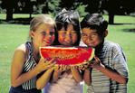 Mixed ethnic group of children ready to eat watermelon