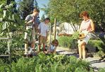 Family of four in vegetable garden