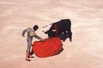 Bullfighter-Matador and Bull at the Climax (Faena)