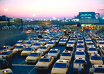 Taxicabs lined up at New York airport.