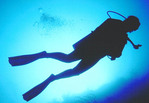 Scuba diver silhouetted underwater