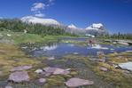 Mountain Lake at Logan Pass Continental Divide