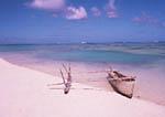 Dug out canoe on tropical beach