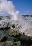 Whakarewarewa Geysers-Pohulu Thermal Springs