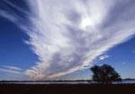 Cumulonimbus cloud the leading edge of a cold front