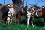 American cowgirl working the range