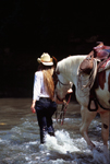 Cowgirl walking horse in the river.