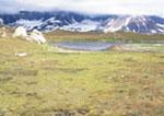 Svalbard, Norway, Gnalodden, Hornsund