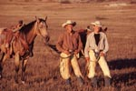 Cowboys from western round-up in the Badlands of North Dakota