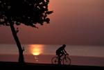 Cyclist at North Ave. Beach
