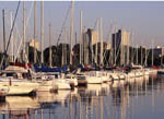 Early morning view of Montrose Harbor