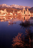 Tufa, Mono Lake, California