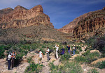 Ancient Pathways day hike. West Grand Canyon.  Group looks at hawk flying over