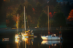 3 sail boats moored in False Creek, Vancouver, BC, Canada