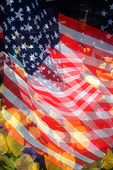 multiple exposure of US flags wih flowers in the foreground