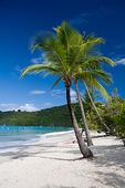 Scenic View of Magans Bay beach, St. Thomas, US Virgin Islands