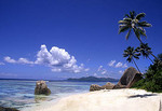 Scene of the famous rocks and beach at La Digue in the Seychelle Islands of Africa