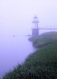 Doubling Point Lighthouse in early morning fog