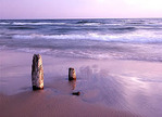 Water draws away from weathered posts on a Lake Michigan beach in the last light of day.