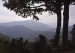 A haze over the Appalachian Mountains in Shenandoah State Park.