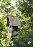 Birdhouse with satelite dish on it.