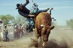 A cowboy riding a bull.