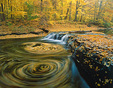 Swirling fall leaves in a waterfall.