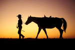 Silhouette of a cowgirl and her horse.