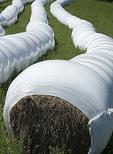 Baled alfalfa hay in plastic protection.