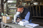 A young man on a ranch looking in the microscope.