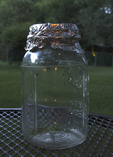 Lightening bugs in a mason jar.