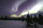 Aurora borealis in Chena Hot Springs, Alaska.