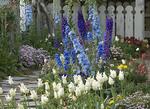 Spring flowers along a garden path.