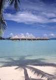 Beautiful beach and water in Bora Bora