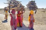 ladies of the indian desert-western india, the Thar deser
