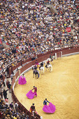 Bull ring before the bull fight