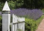 Garden gate and brick walkway