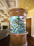 Circular freestanding saltwater aquarium in an upscale home in the northwest suburbs of Chicago.
