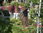 Garden with small American flag