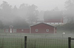 Red barn and farm in early morning fog