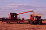 Combine and 7240 tractor during soybean harvest.